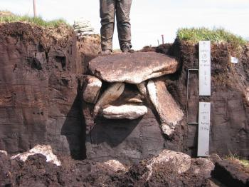 "The Whitehorse Cist burial (courtesy <a href=""http://www.dayofarchaeology.com"" target=""_blank"">Day of Archaeology</a>)"